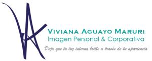 VA image logo2